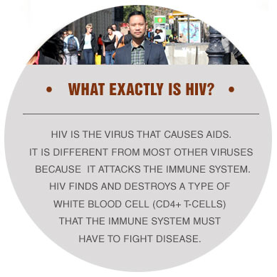 what-is-hiv-graphic